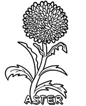 Entertaining Your Kids With Free Coloring Pages