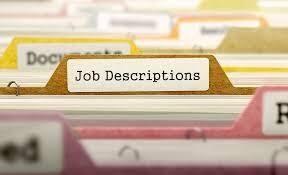 Vice President Human Resources Job Description Templates